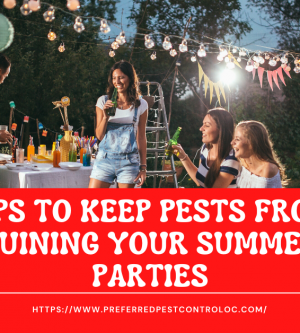 Tips To Keep Pests From Ruining Your Summer Parties