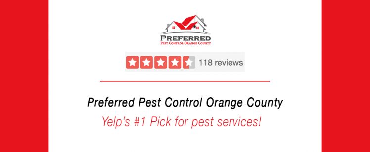 Why Clients Rave About Preferred Pest Control OC